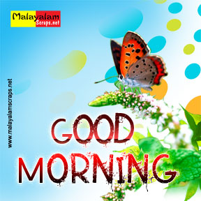 Good Morning Facebook Status Good Morning Facebook Quotes Good
