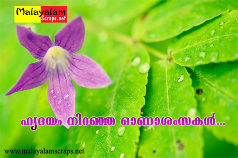 Page 2 onam malayalam scraps malayalamonline greeting and copy and paste this code on your friends scrapbook select code m4hsunfo